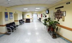 Государственный центр пластической хирургии