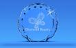 Международная премия Diamond Beauty