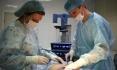 Профессиональные действия доктора Свиридова обещают отличный результат