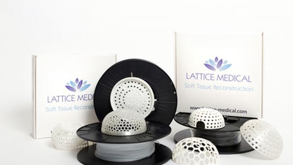 Первые прототипы Lattice Medical