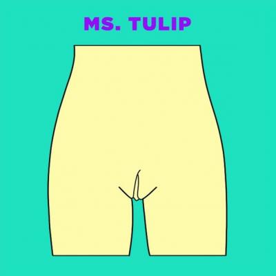 Мисс Тюльпан вагина